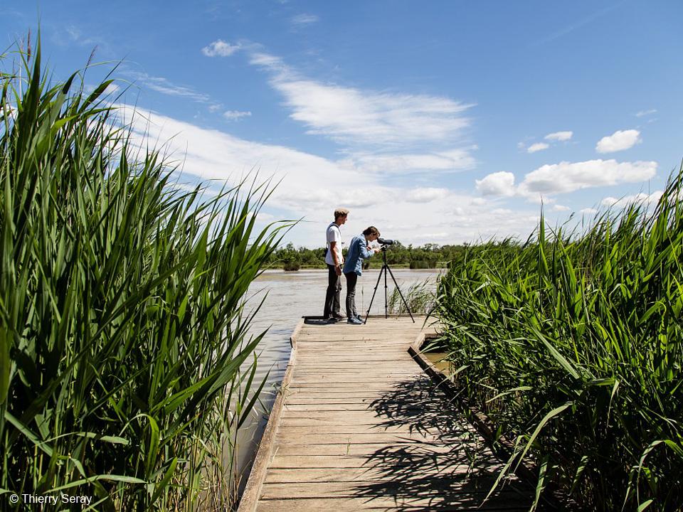 Les Marais du Vigueirat GROUPE SOS Transition écologique
